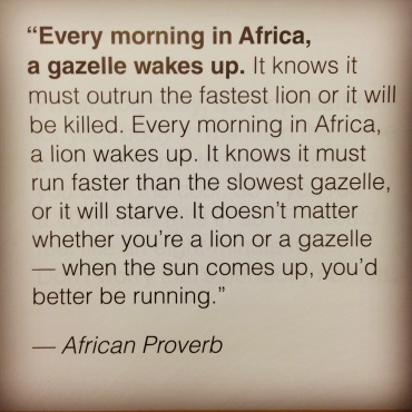 Every Morning In Africa Lindsey Lazarte
